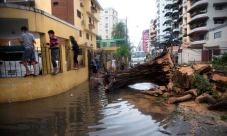 La gente pasa junto a un árbol caído y una calle inundada en Santo Domingo después de la tormenta tropical Laura.