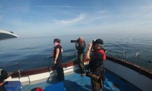 Excursiones de un día en un viaje en barco por la naturaleza en la costa de Yorkshire, North Yorkshire, Reino Unido.