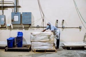 Un empleado prepara bayas de palma secas para su procesamiento en Valensa International, un fabricante de extracto de bayas de palma con sede en Eustis, Florida.