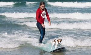 Surfista y perro, ambos en una tabla de surf en Byron Bay, Australia.