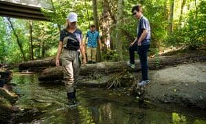 Los investigadores Jenifer McIntyre, de izquierda a derecha, Edward Kolodziej y Zhenyu Tian están investigando la mortalidad del salmón en Longfellow Creek, un arroyo urbano en el área de Seattle.