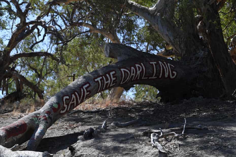"""""""Nos alimentó, nos cuidó y realmente lo respetamos"""", dice Badger Bates del Darling River."""