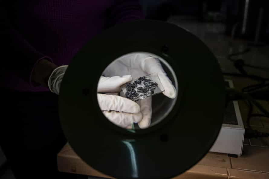 Muestras de lava montadas en un portaobjetos para mediciones bajo un microscopio en el Instituto de Vulcanología