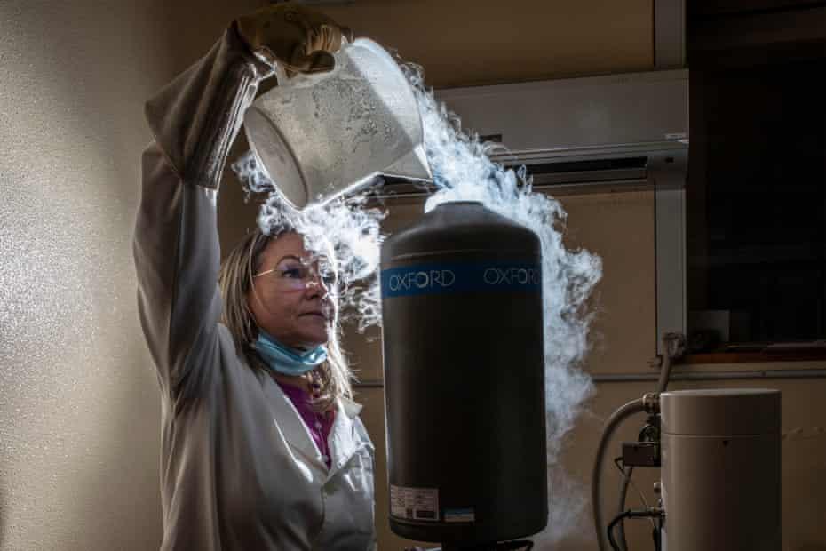 Lucia Miraglia vierte nitrógeno líquido en un microscopio electrónico de barrido en un laboratorio del Instituto de Vulcanología de Catania.