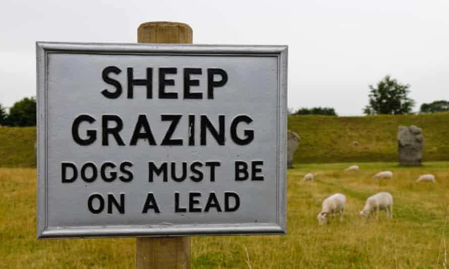 Cartel para advertir al público que mantenga a los perros con correa mientras las ovejas pastan