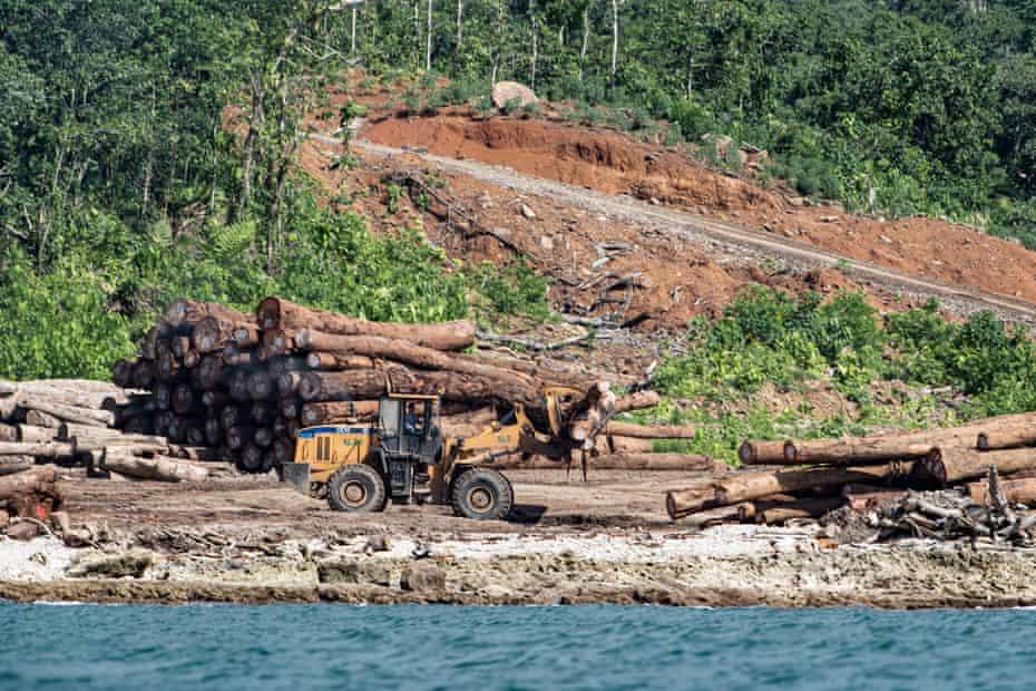 Una excavadora con troncos junto a un río.