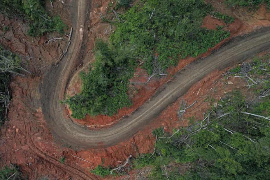 Una curva en una carretera desde arriba, con árboles talados a su alrededor.
