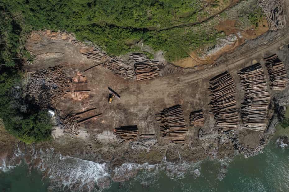 China suele reclamar más del 90% del total de toneladas de madera exportadas por Papua Nueva Guinea y las Islas Salomón.
